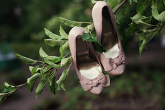 Wedding shoes hanging on a tree in the park Royalty Free Stock Photo