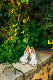 Wedding shoes on a stone border against a background of green leaves Royalty Free Stock Images