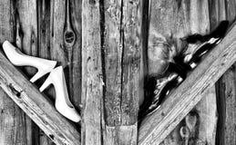 Wedding shoes. On wooden balk stock photo