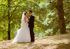 Wedding shot of bride and groom in park Stock Images