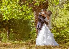 Wedding shot of bride and groom in park Royalty Free Stock Images