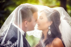 Wedding shot of bride and groom Royalty Free Stock Images