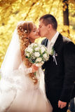 Wedding shot of bride and groom Royalty Free Stock Photo