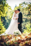 Wedding shot of bride and groom Royalty Free Stock Photography
