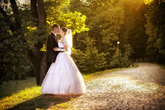 Wedding shot of bride and groom Royalty Free Stock Photos