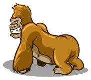 Brown Gorilla Royalty Free Stock Photo