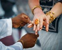 Wedding in Sri Lanka. Ritual - priest ties little fingers with a. Wedding in Sri Lanka. Ritual - the priest ties little fingers with a thread Royalty Free Stock Image