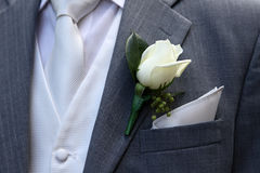 Wedding suit. With tie and rose buttonhole Royalty Free Stock Images