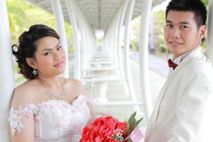 Wedding suit of couple Stock Images