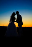 Wedding sunset Stock Photos