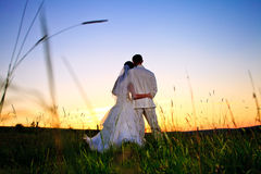 Wedding sunset Royalty Free Stock Photos