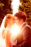 Wedding sunset kiss Royalty Free Stock Photo