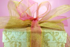 Wedding Surprise Royalty Free Stock Photography