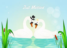Wedding of swans. Illustration of swans in love in the lake Royalty Free Stock Photos