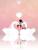 Wedding swans Stock Images