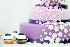 Wedding sweets, blueberry cake Stock Photography