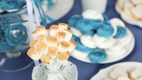 Wedding sweety turquoise white stock video