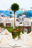 Wedding table and centerpiece. A wedding table in white with a large sculptured centerpiece in a pot Stock Images