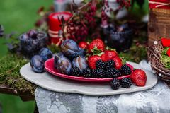 Wedding table decor: ceramic dishes with plums, strawberries, blackberries, standing on the lace tablecloth and moss. Bridal detai. Ls and decorations with Stock Photography