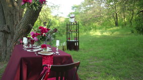 Wedding table decor at nature stock video