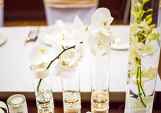 Wedding table decoration. With Orchid and glassware Stock Photography