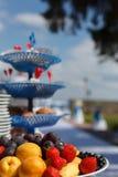 Wedding table with fresh fruits Stock Image