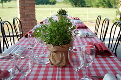 Wedding table with  pot of mint. Wedding table with a little pot of mint Royalty Free Stock Photo