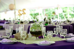 Wedding tables. Set up for fine dining in Green and Purple, unique centerpieces Stock Photography