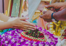 Wedding. In thailand Stock Photography