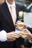 Wedding toast Royalty Free Stock Photos