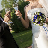 Wedding toast Stock Photography