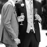 Wedding toasting Royalty Free Stock Image