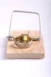 Wedding Trap3. Wedding ring in trap Royalty Free Stock Image