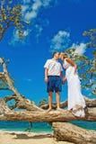 Wedding on a tree. Happy couple kissing near tree Stock Image