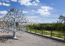Wedding tree. Narva, Estonia. The wedding day attach leaflets with the names Stock Image
