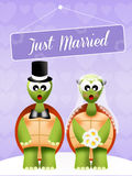 Wedding of turtles Royalty Free Stock Images