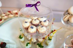 Wedding variety dessert cakes, sweet muffins with tasty buffet color decorated with whipped violet cream under the transparent cov. Er, candy bar, buffet Stock Photo