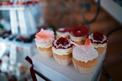 Wedding variety dessert cakes with tasty buffet color decorated with whipped red cream, sweet muffins, candy bar, buffet.  Royalty Free Stock Images