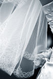 Wedding veil Royalty Free Stock Images
