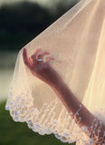 Wedding Veil Royalty Free Stock Image
