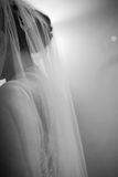 Wedding Veil. Bride with a long veil and a wedding gown Royalty Free Stock Images