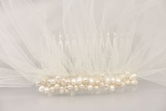 Wedding veil with a pearl comb. Ivory bridal wedding veil with a pearl comb Stock Photos