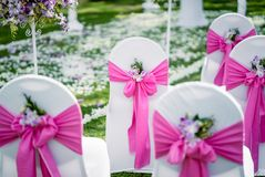 Wedding banquet chair cover in pink theme with the cone of rose and petals royalty free stock image