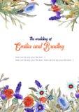 Wedding vertical frame of wild flowers. Watercolor. Flower arrangement. Greeting card template design. Invitation royalty free illustration