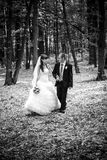 WEdding walk in forest Royalty Free Stock Photography