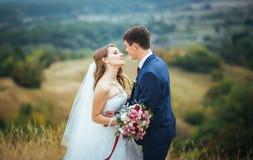 Wedding walk on nature. Beautiful Wedding walk on nature Ukraine Sumy Royalty Free Stock Photos