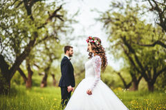 Wedding walk on nature. Bride and groom together Stock Photography