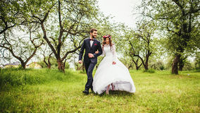 Wedding walk on nature. Bride and groom together Stock Image