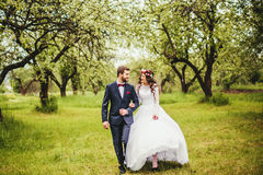 Wedding walk on nature. Bride and groom together Royalty Free Stock Photo