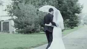 Wedding walking stock video footage